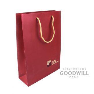 Пакет картонный корпоративный с логотипом